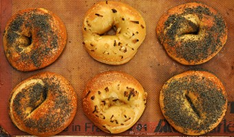 Traditional Bagels